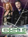 CSI: Crime Scene Investigation - Season 4.2 (3 DVDs, Amaray) Poster