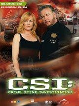 CSI: Crime Scene Investigation - Season 6.2 (3 DVDs) Poster