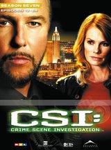 CSI: Crime Scene Investigation - Season 7.2 (3 DVDs) Poster