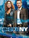 CSI: NY - Season 2.1 (3 DVDs) Poster