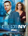 CSI: NY - Season 2.2 (3 DVDs) Poster