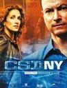 CSI: NY - Season 3.1 (3 DVDs) Poster