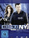 CSI: NY - Season 6.2 (3 Discs) Poster