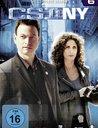 CSI: NY - Season 6 (6 Discs) Poster