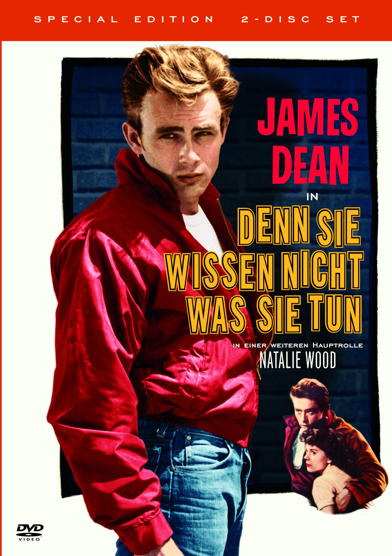 ... denn sie wissen nicht, was sie tun (Special Edition, 2 DVDs) Poster
