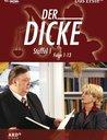 Der Dicke - Staffel 1, Folge 01-13 (4 DVDs) Poster