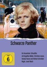 Der schwarze Panther Poster