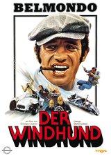 Der Windhund Poster