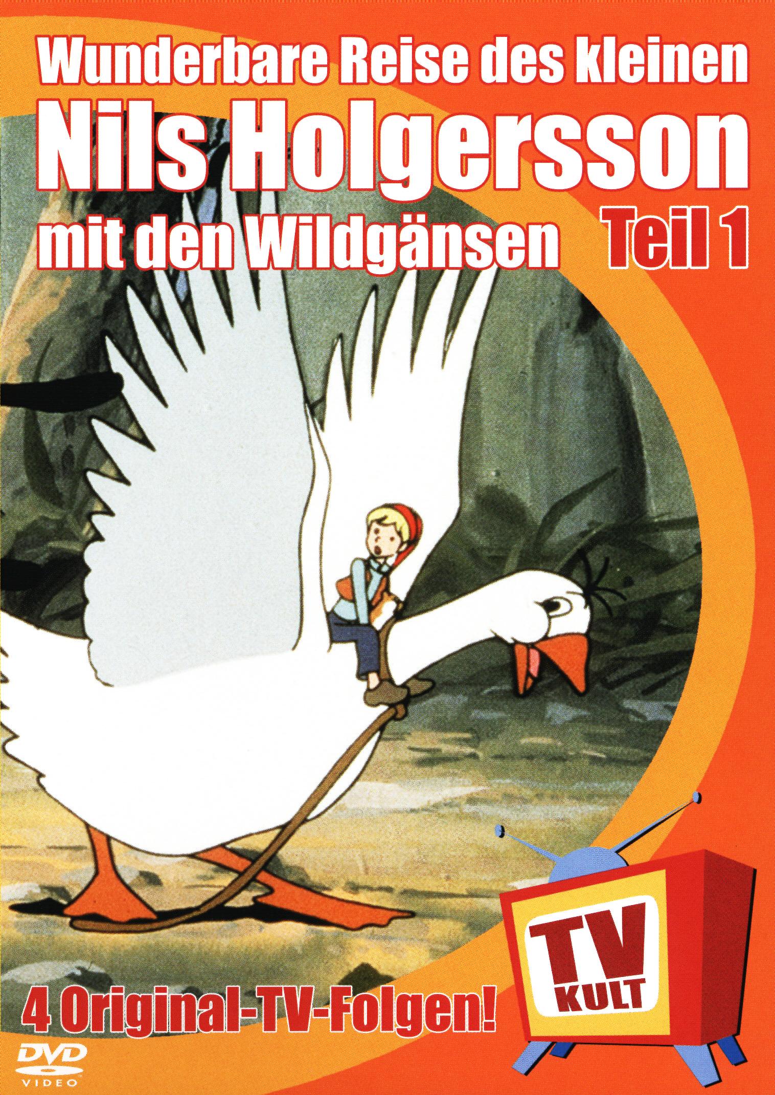 Die Wunderbare Reise des kleinen Nils Holgersson mit den Wildgänsen, Teil 01 Poster