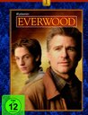 Everwood - Die komplette 1. Staffel (6 DVDs) Poster