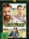 Everwood - Die komplette 2. Staffel (6 DVDs) Poster