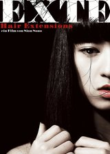 Exte - Hair Extensions Poster