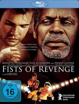 Fists of Revenge Poster