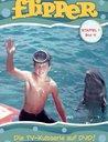 Flipper - Staffel 1, Box 4 (2 DVDs) Poster