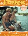 Flipper - Staffel 3, Box 3 (3 DVDs) Poster