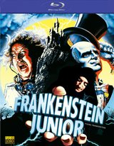 Frankenstein Junior Poster