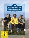 Freunde fürs Leben - Staffel 1 (4 Discs) Poster
