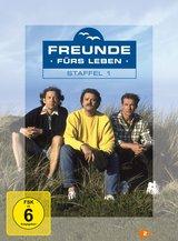 Freunde fürs Leben - Staffel 1 (4 DVDs) Poster
