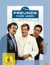 Freunde fürs Leben - Staffel 2 (3 DVDs) Poster