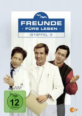 Freunde fürs Leben - Staffel 3 (3 Discs) Poster