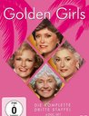 Golden Girls - Die komplette dritte Staffel (4 DVDs) Poster