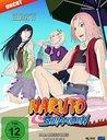 Naruto Shippuden - Die komplette Staffel 11 (3 Discs) Poster