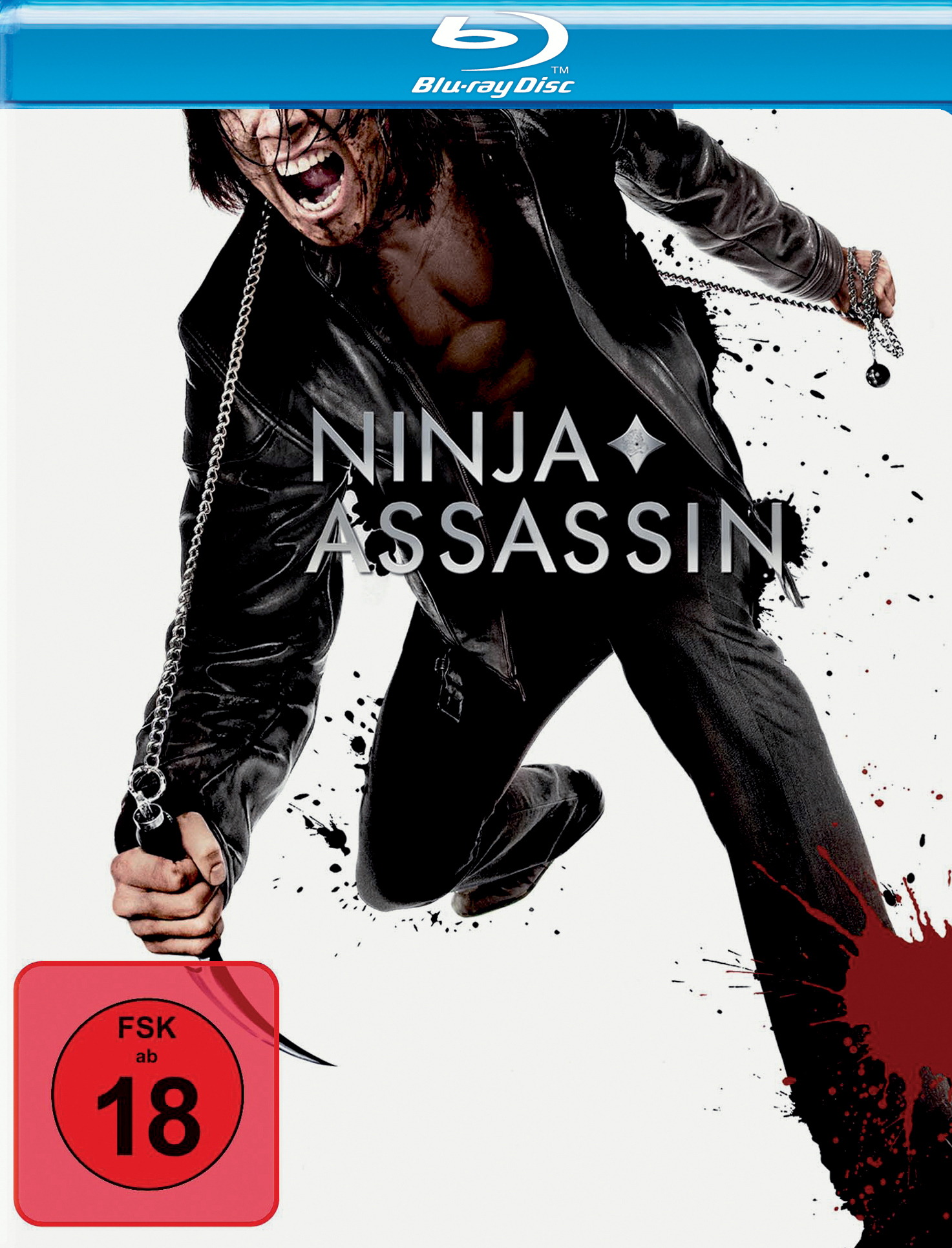 Ninja Assassin Poster