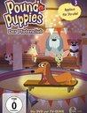Pound Puppies - Applaus für Strudel, Folge 3 Poster
