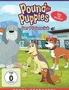 Pound Puppies - Der Pfotenclub: Staffel 2, Vol. 2 - Hunde verboten! Poster