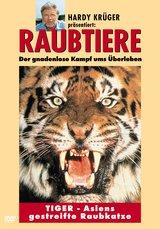 Raubtiere: Tiger - Asiens gestreifte Raubkatze Poster