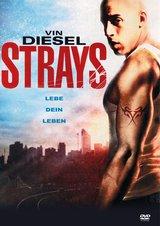 Strays - Lebe dein Leben Poster
