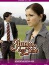 Sturm der Liebe - Folge 031-40: Schicksalsschläge (3 DVDs) Poster
