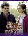 Sturm der Liebe - Folge 061-70: Schmerzliche Entdeckungen (3 DVDs) Poster