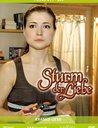 Sturm der Liebe - Folge 211-220: Kranke Liebe (3 DVDs) Poster