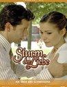 Sturm der Liebe - Folge 261-270: Am Ende des Schweigens (3 DVDs) Poster