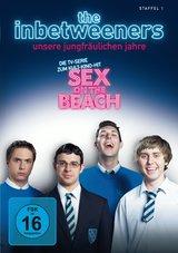 The Inbetweeners - Unsere jungfräulichen Jahre, Staffel 1 Poster