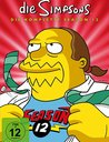 The Simpsons - Die komplette Season 12 (4 DVDs) Poster
