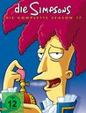 The Simpsons - Die komplette Season 17 Poster