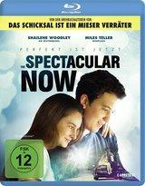 The Spectacular Now - Im Hier und Jetzt Poster