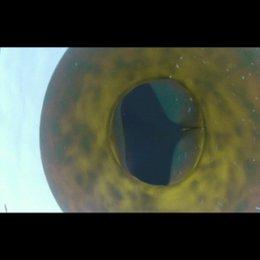 Piranha 3D - Trailer