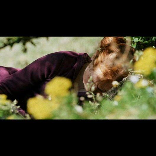 Der Fuchs und das Mädchen (DVD/Blu-Ray-Trailer) Poster