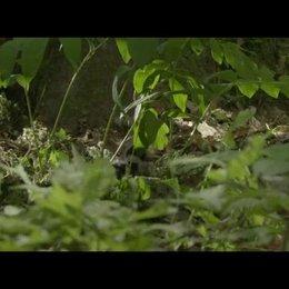 Unsere Wildnis - Trailer