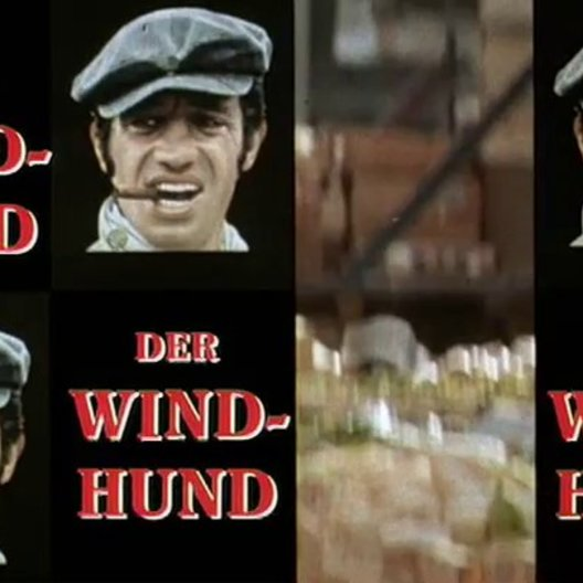 Der Windhund - Trailer Poster