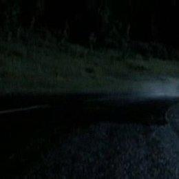 Rasante Fahrt im Aston Martin - Szene Poster