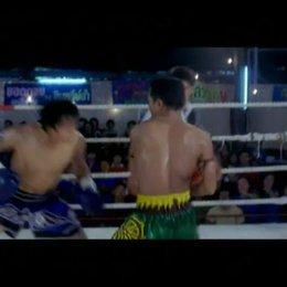 Beautiful Boxer - OV-Trailer