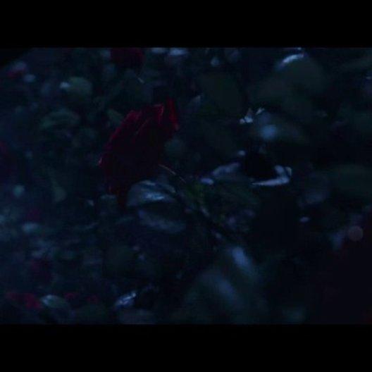 Ein Leben für eine Rose - Szene Poster