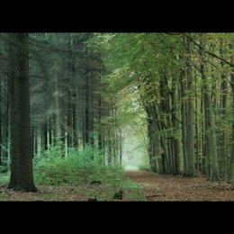 Grenzbock - Trailer