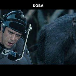 Ape Evolution - Sonstiges