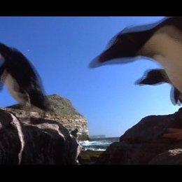 Nomaden der Lüfte - Das Geheimnis der Zugvögel - OV-Trailer