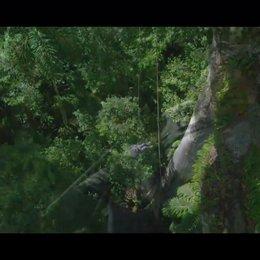 Das Geheimnis der Bäume - Trailer Poster